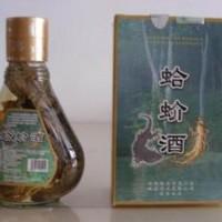广西雄森牌 正宗蛤蚧酒 露酒 保健酒 酒  人参酒