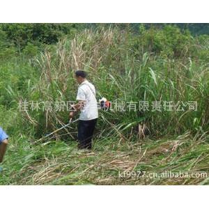 科丰直销小型农业机械 水稻收割机 小型割草机 割灌机