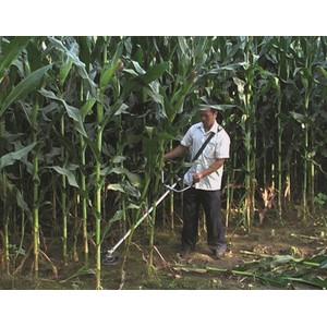 桂林科丰长期大量供应玉米农业机械收割机