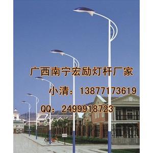 广西六米灯杆多少钱一根?【宏励体育照明灯具有限公司】