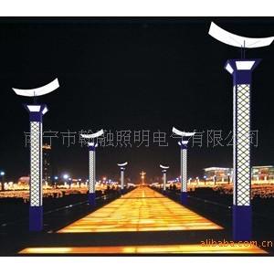 广西来宾LED景观灯安装公司,来宾景观灯具维护公司