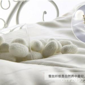 厂家直销 供应原料/批发 蚕丝被-100%桑蚕丝-长丝-